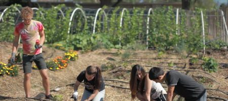 food justice students in garden