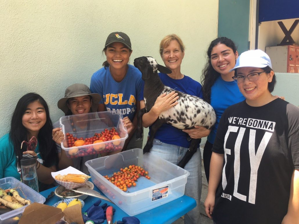 UCLA students and community partner, Karen Snook of Kindred Spirits Care Farm